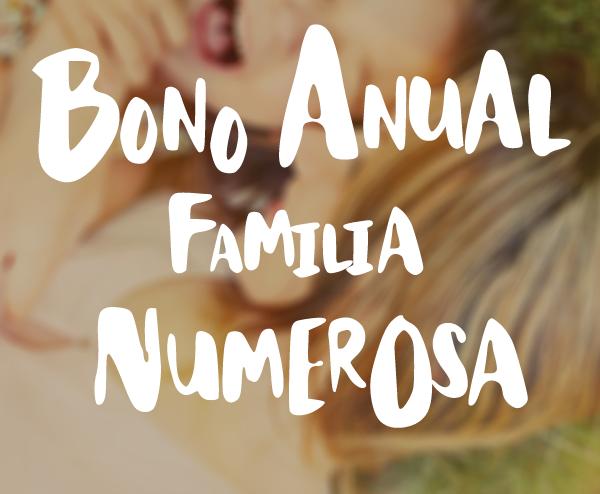 slider bonos familia numerosa
