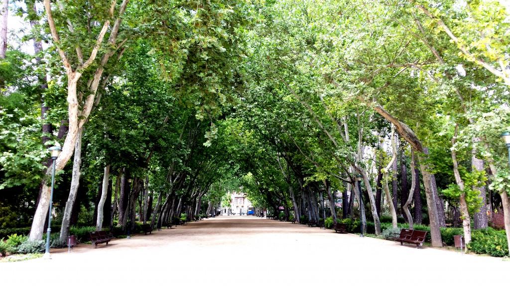 Paseo_principal_del_Parque_Abelardo_Sánchez_al_norte._Albacete